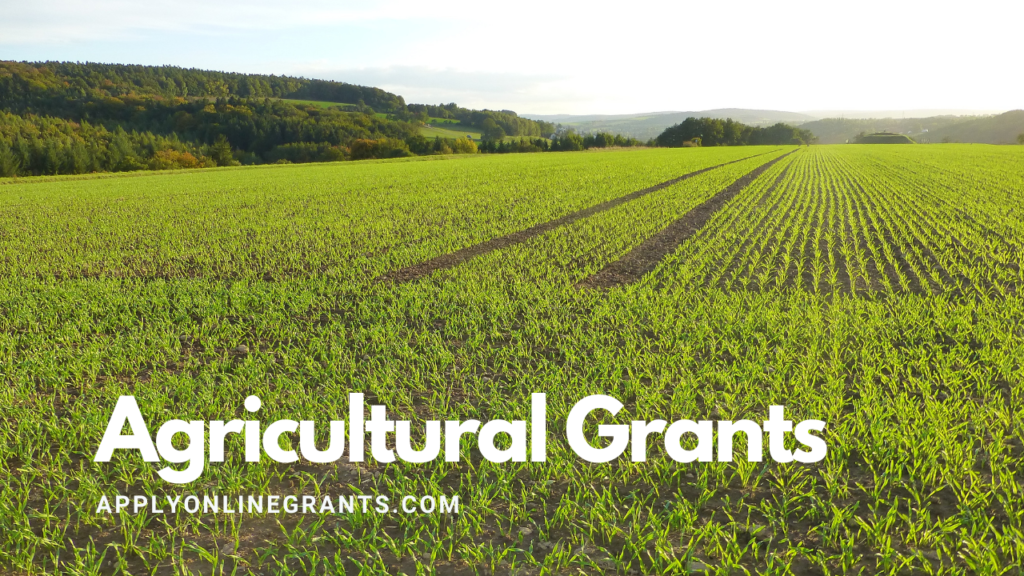 Agricultural Grants