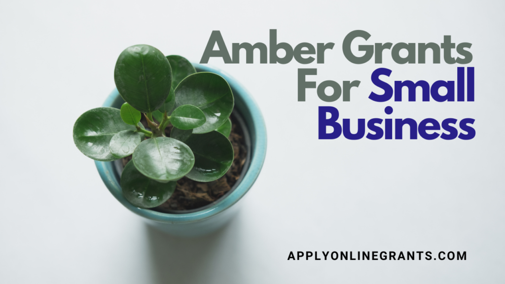 Amber Grants For Small Business