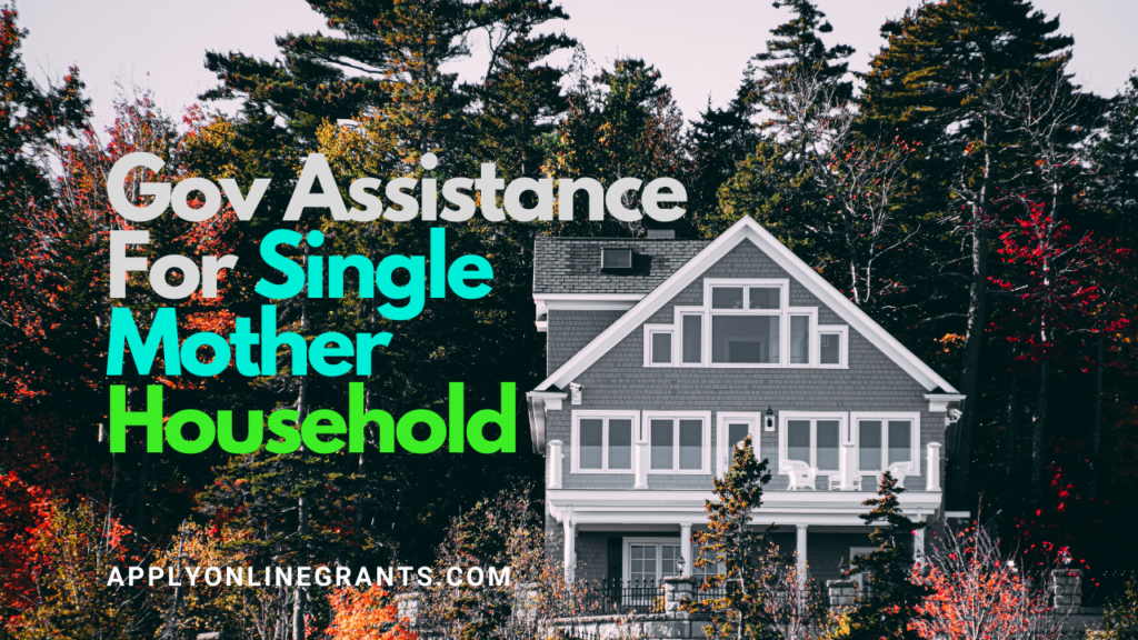 Gov Assistance For Single Mother Household