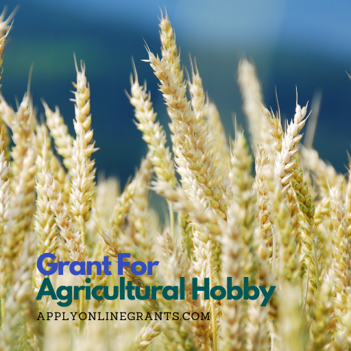 Agricultural Hobby Grant