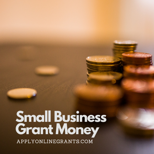 Small Business Grant Money