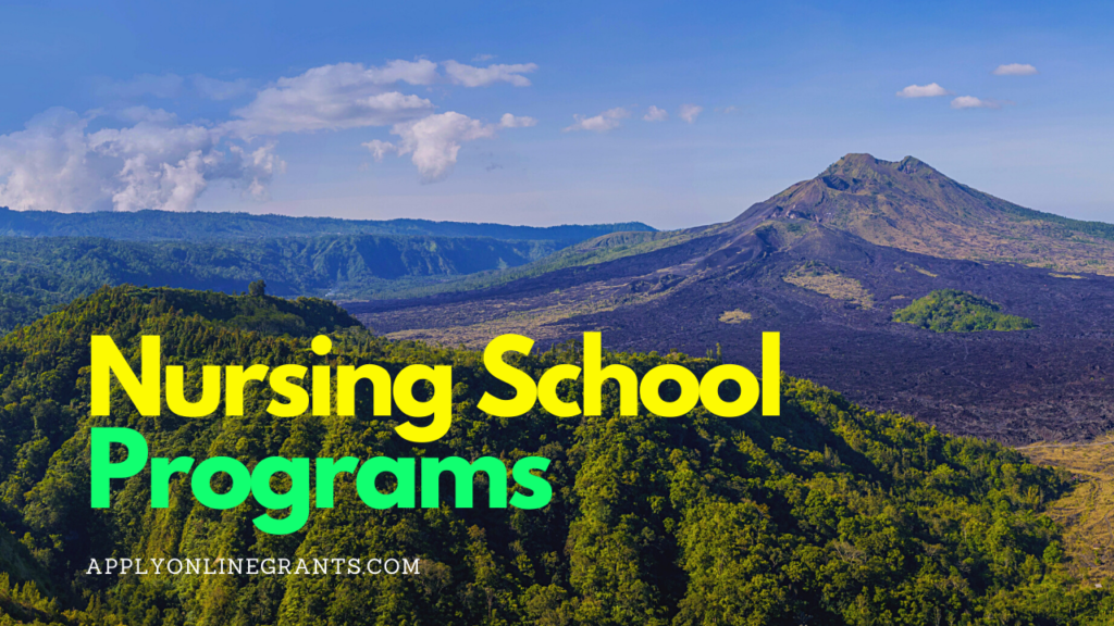 Nursing School Programs