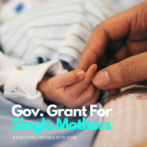 Government Grant for Single Moms